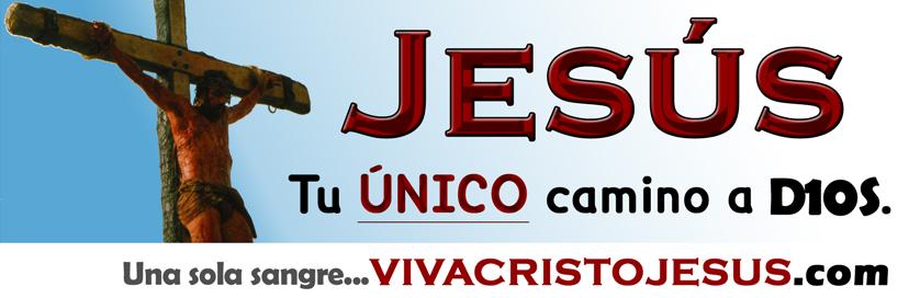 jesus_el_unico_camino_800